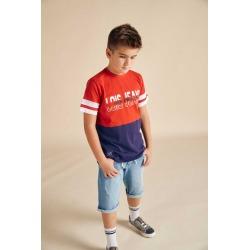 Camiseta niño lois junior